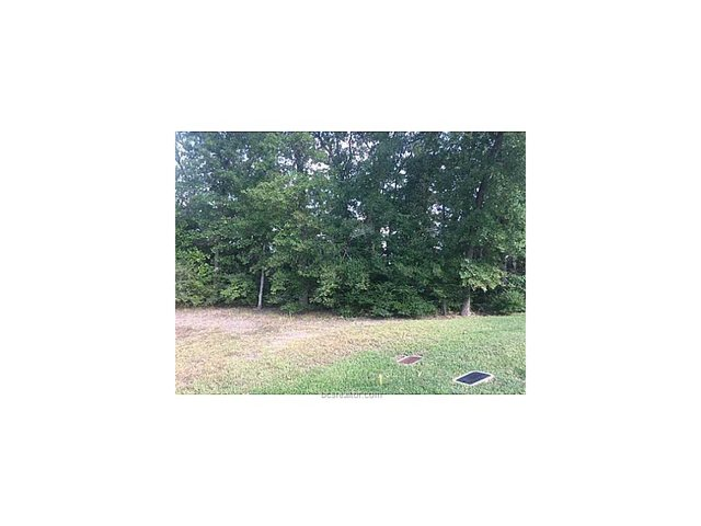 Photo of Listing #101446